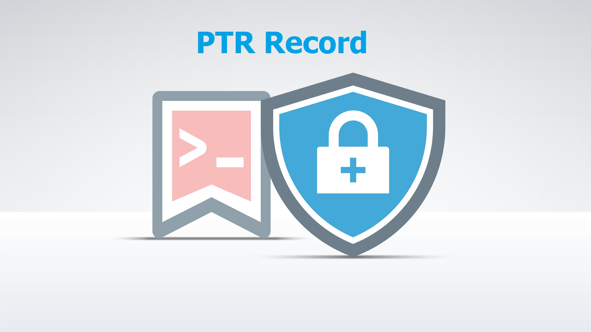 PTR record protect