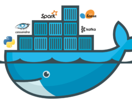 How to configure Nginx reverse proxy to host multiple Docker containers on a Single Server Cluster